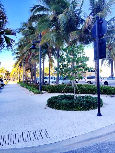 Atlantic Beach Florida Address